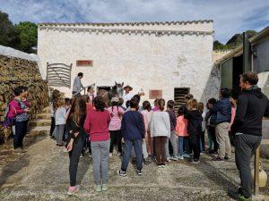 Foto colegios 2018 excursión